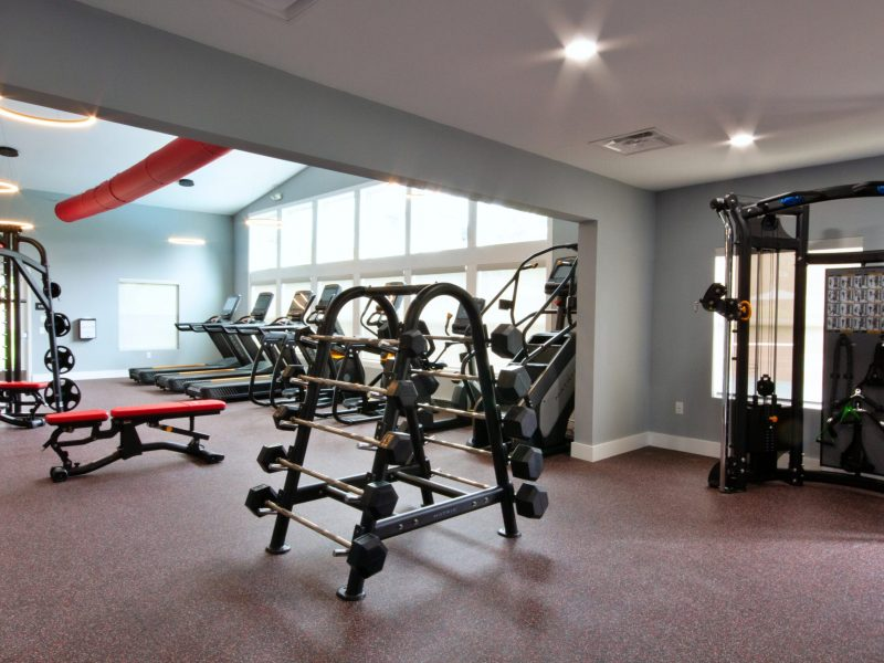 a picture showing the workout athletic club with free-weights, treadmills, and workout stations
