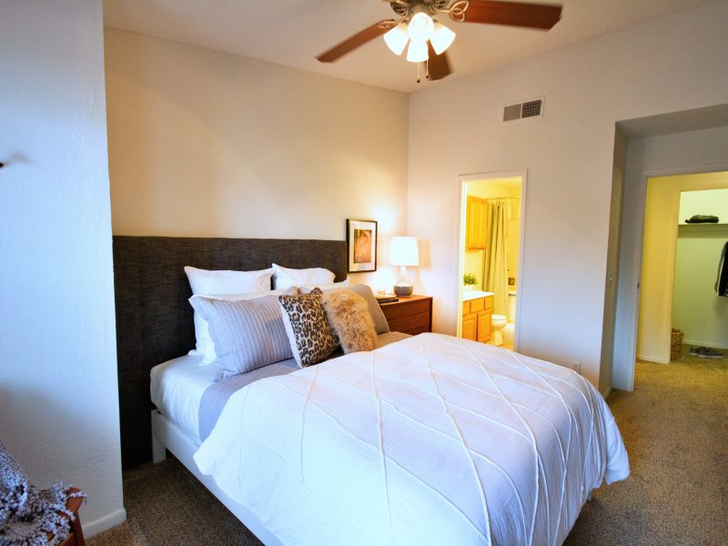 TGM Meadow View Apartments Bedroom 3